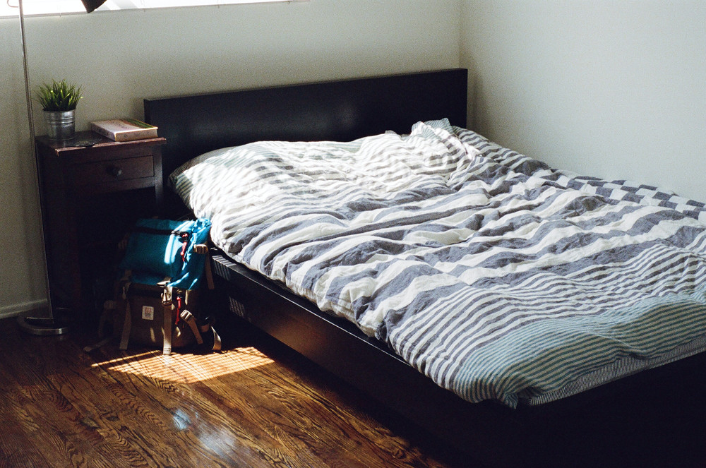 Bed Bugs: How to Put Them to Rest