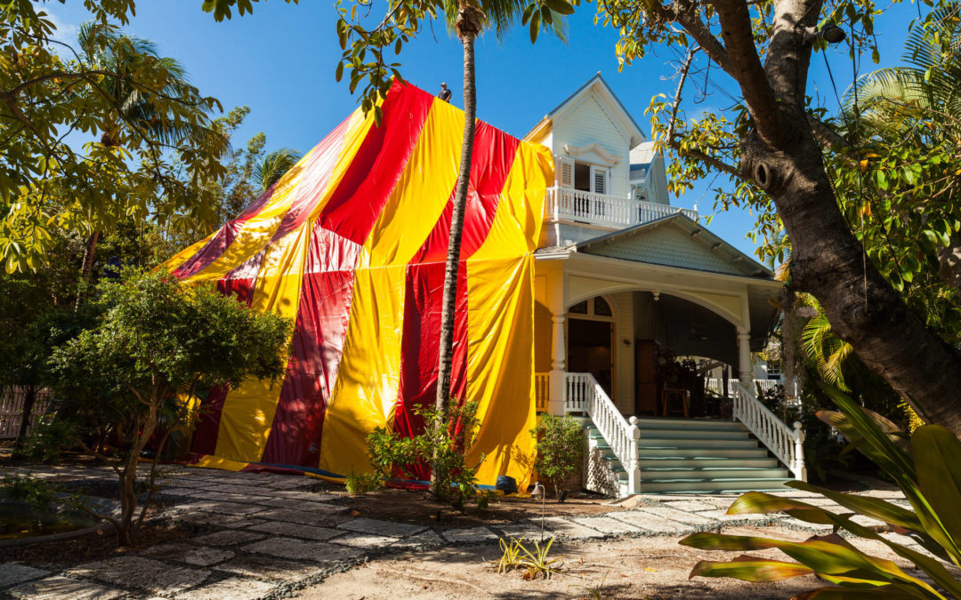 The Pest Cartel: Now Offering Fumigation Services in Winter Haven
