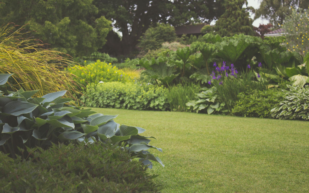 The Pest Cartel: Now Serving Plant City for Fertilization Services
